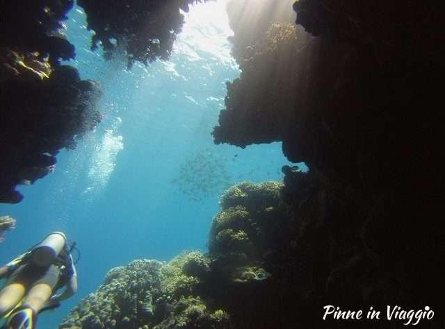 immersioni marsa alam
